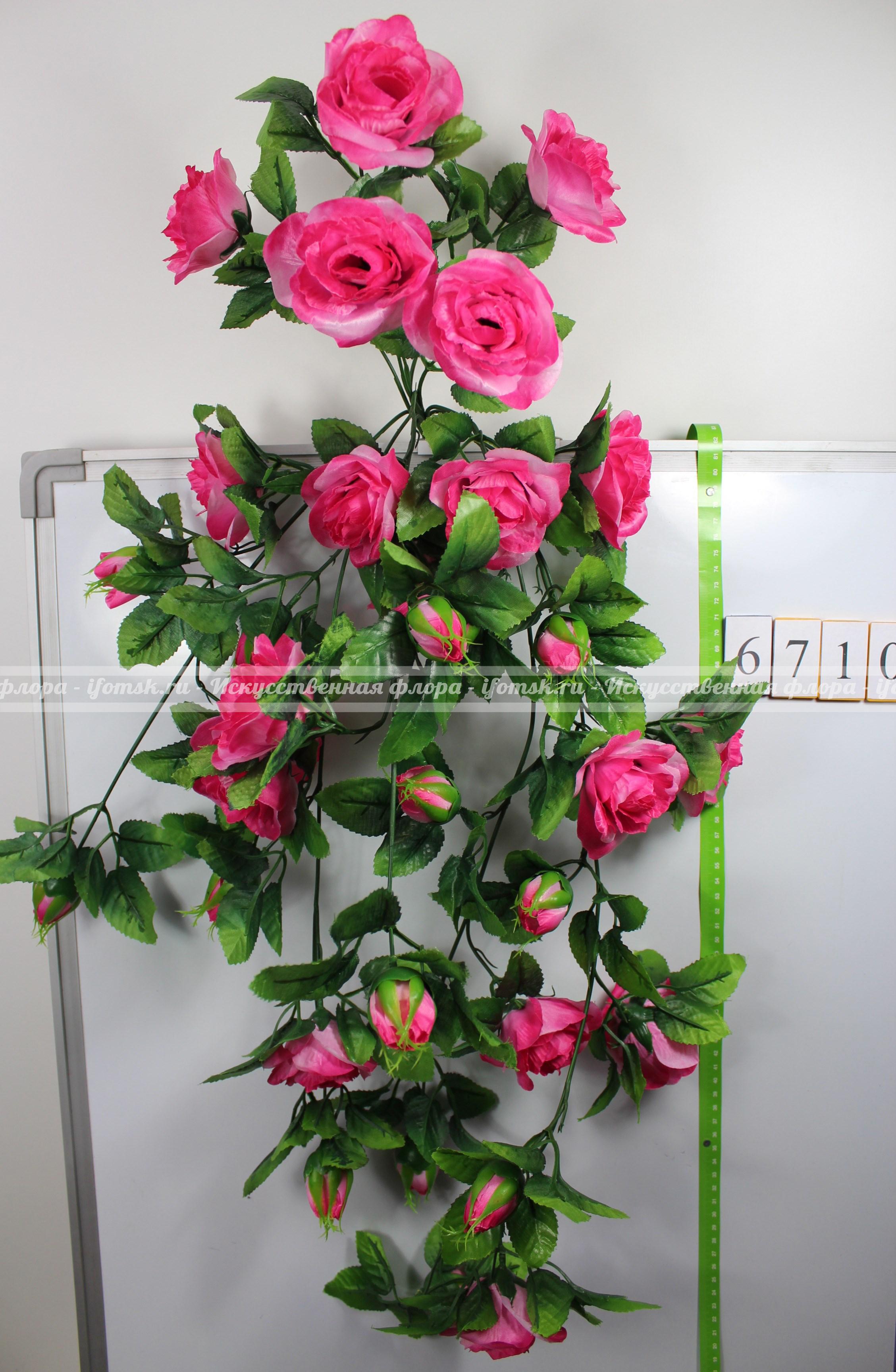 Цветы ампельный фото